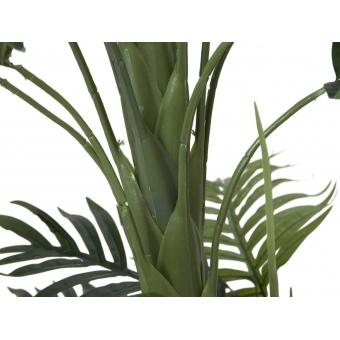 EUROPALMS Phoenix palm, artificial plant, 170cm #2