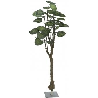 EUROPALMS Pothos tree, 150cm