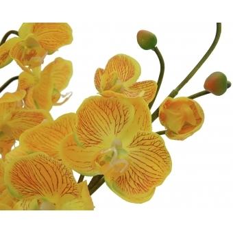 EUROPALMS Orchid Arrangement EVA, yellow #2