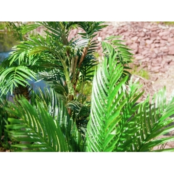 EUROPALMS Kentia palm tree, artificial plant, 140cm #14