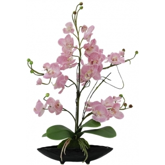 EUROPALMS Orchid arrangement EVA, artificial, purple