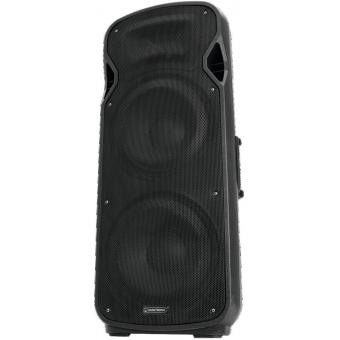 OMNITRONIC VFM-2212 2-Way Speaker #2