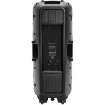 OMNITRONIC VFM-2215 2-Way Speaker #3