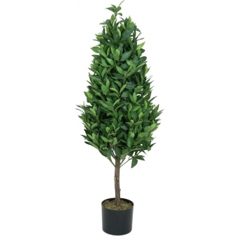 EUROPALMS Laurel Cone Tree, high trunk, artificial plant, 120cm