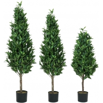 EUROPALMS Laurel Cone Tree, high trunk, artificial plant, 120cm #3