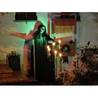 EUROPALMS Halloween spider web white 100g UV active #3