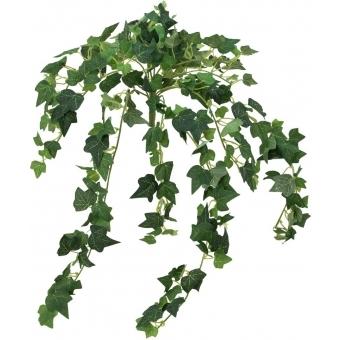 EUROPALMS Ivy Bush, 50 cm