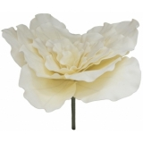 EUROPALMS Giant Flower (EVA), cream white, 80cm