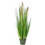 EUROPALMS Fountain Grass Bush 90cm