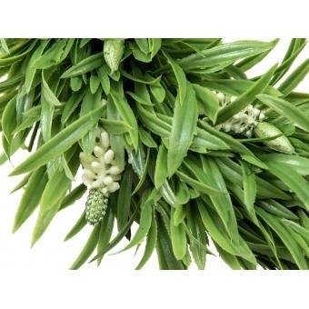 EUROPALMS Lavender Wreath, 30cm #2