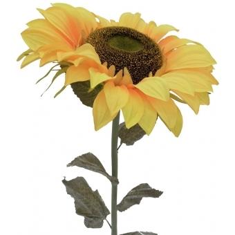 EUROPALMS Sunflower, 130cm #2