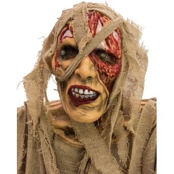 EUROPALMS Halloween Mummy, 170cm #2