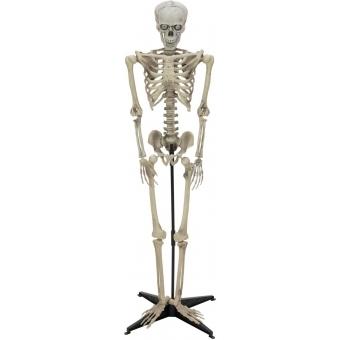 EUROPALMS Halloween Figure Cellskel 163cm