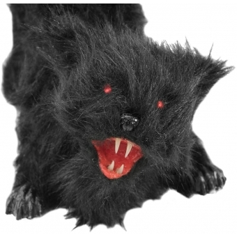 EUROPALMS Halloween cat with sound+led+moving #2