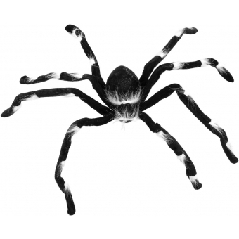 EUROPALMS Halloween spider 70x14x5 #2