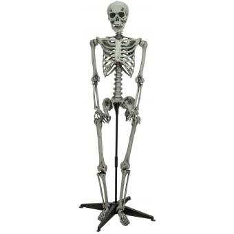 EUROPALMS Halloween standing skeleton, 160cm