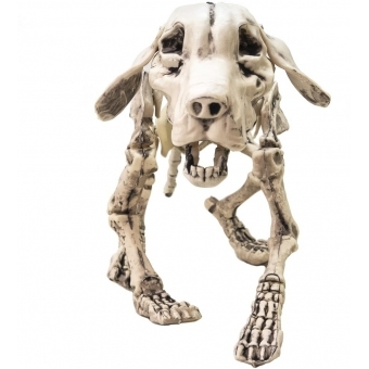 EUROPALMS Halloween Skeleton Dog, 71x40x25cm #2