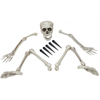 EUROPALMS Halloween Skeleton, multipart