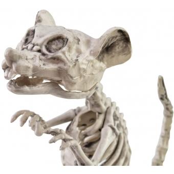 EUROPALMS Halloween Skeleton Rat, 32x10x16cm #2