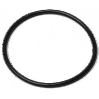 SNAP O-ring black 25x