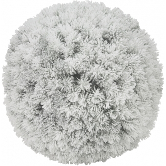 EUROPALMS Pine ball, flocked, 30cm