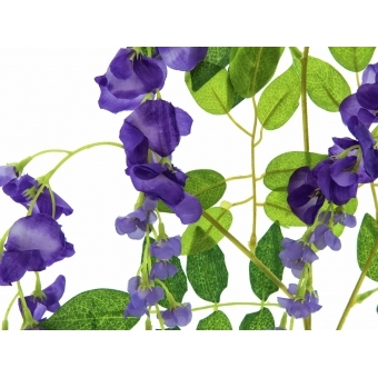 EUROPALMS Wisteria Branch, purple #2