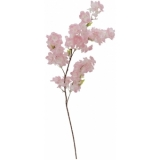 EUROPALMS Cherry spray XXL, pink, 90cm