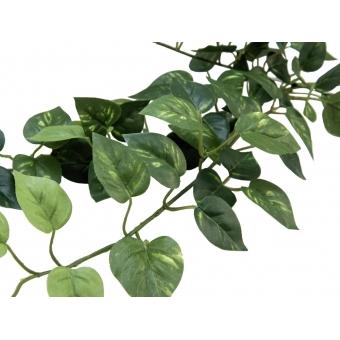 EUROPALMS Pothos bush tendril classic, artificial, 70cm #3