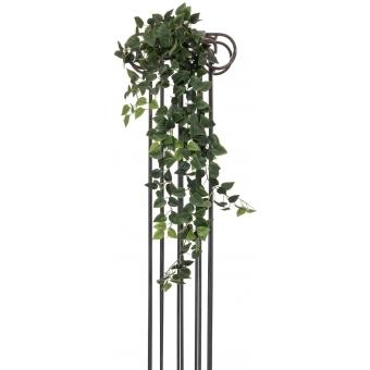 EUROPALMS Philodendron Bush Classic, 100cm #2