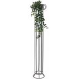 EUROPALMS Philodendron Bush Classic, 100cm