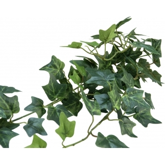 EUROPALMS Ivy Bush Tendril Classic, 70cm #3