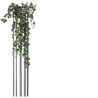 EUROPALMS Ivy Bush Tendril Classic, 100cm #2
