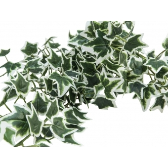 EUROPALMS Holland ivy bush tendril classic, artificial, 60cm #3