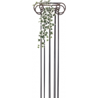 EUROPALMS Holland Ivy Bush Tendril Classic, 70cm #2