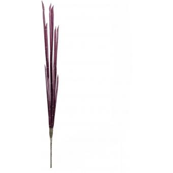 EUROPALMS Magic Onion Stalks, rose, 134cm