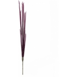 EUROPALMS Magic Onion Stalks, rose, 134cm