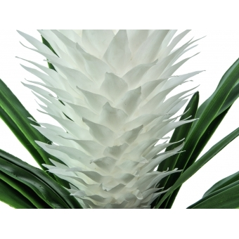 EUROPALMS Magic Bromelie, artificial plant, white, 100cm #2