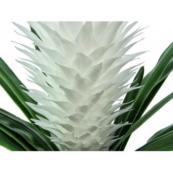EUROPALMS Magic Bromelie, white, 100cm #2