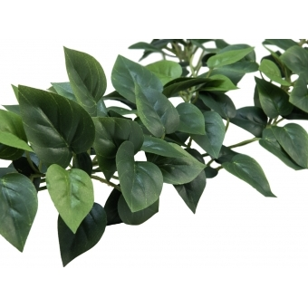 EUROPALMS Philodendron Garland Classic, 180cm #3