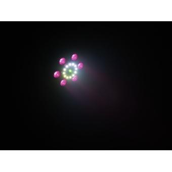 EUROLITE LED Laser Slim FX Spot #13