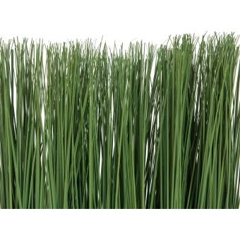 EUROPALMS Marram grass, 50x27cm #3