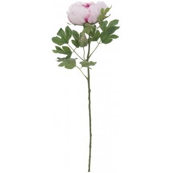 EUROPALMS Peony Branch Classic, pink, 80cm