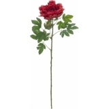 EUROPALMS Peony Branch Classic, magenta, 80cm