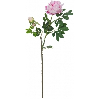 EUROPALMS Peony Branch Premium, pink, 100cm