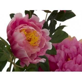 EUROPALMS Peonies, rose, 90cm #2