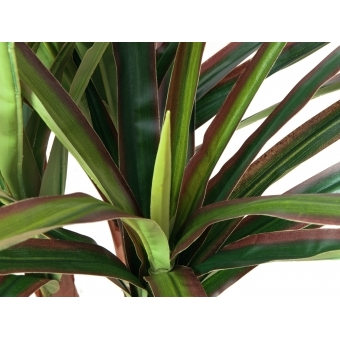 EUROPALMS Dracena, artificial plant, 120cm #2