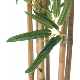 EUROPALMS Bamboo deluxe, artificial plant, 120cm #3