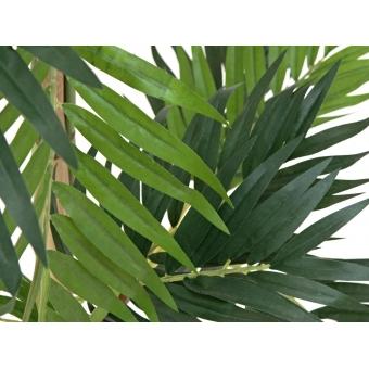 EUROPALMS Parlor palm, artificial plant, 150cm #3