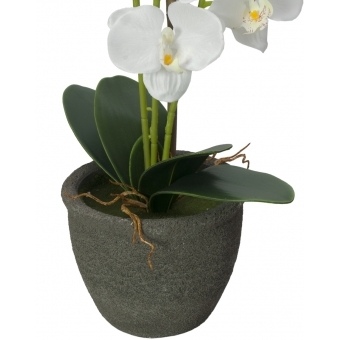 EUROPALMS Orchid, artificial plant, white, 80cm #4