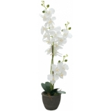 EUROPALMS Orchid, artificial plant, white, 80cm